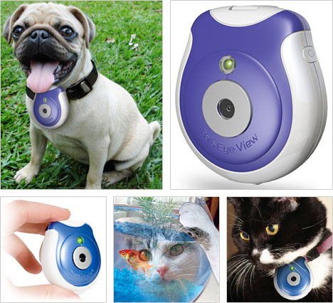 Pet's Eye View Camera Records Your Dog Or Cat's Adventures