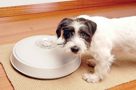8-Day Autopetfeeder Automatic Pet Feeder