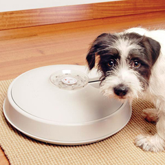 8 Day Autopetfeeder Automatic Pet Feeder