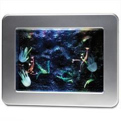 The Hypnotic Jellyfish Aquarium